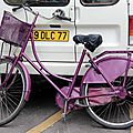 vélo violet_3038