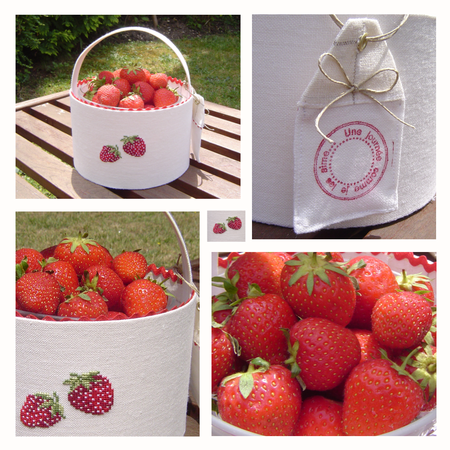 fraise_6