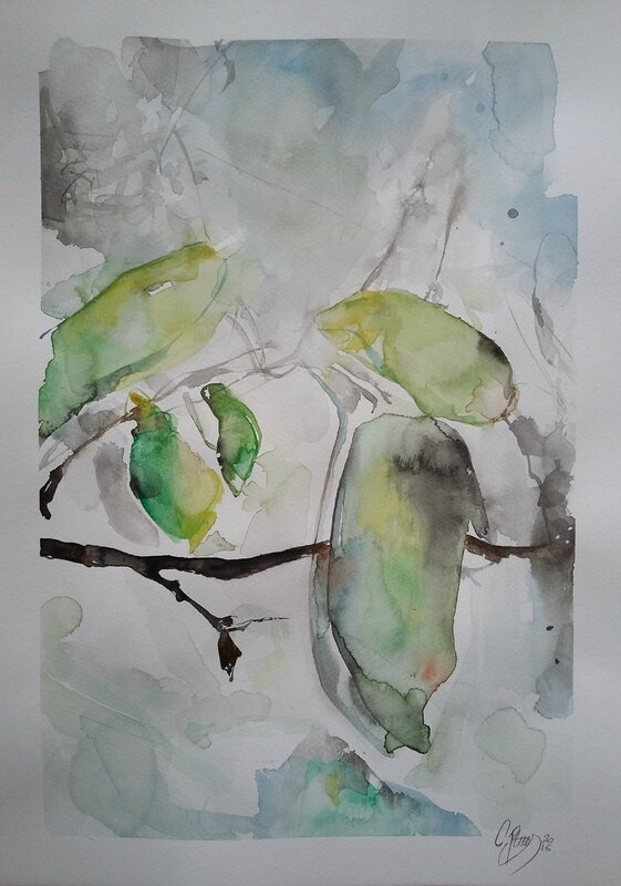 watercolors inspired by nature and by Sander Stein's Great photographs (8)
