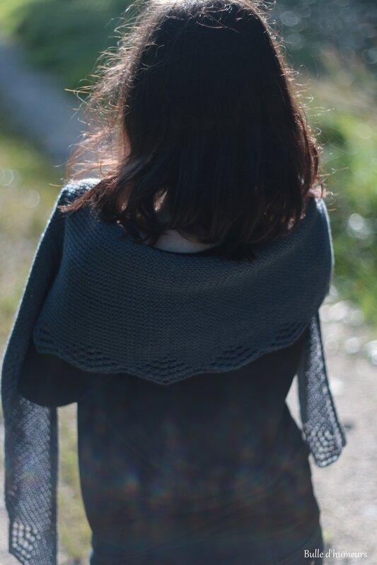Ambercup de l'île aux fils (septembre 2014) (4)