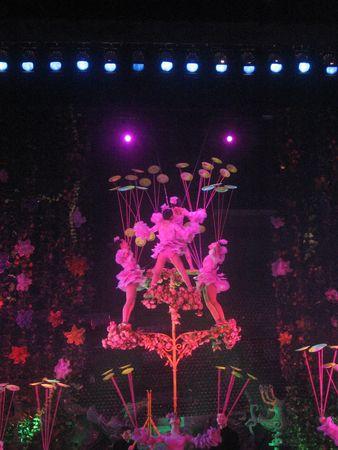 Beijing_Lunar_New_Year_2009_329