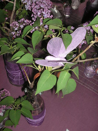 table_lilas_020