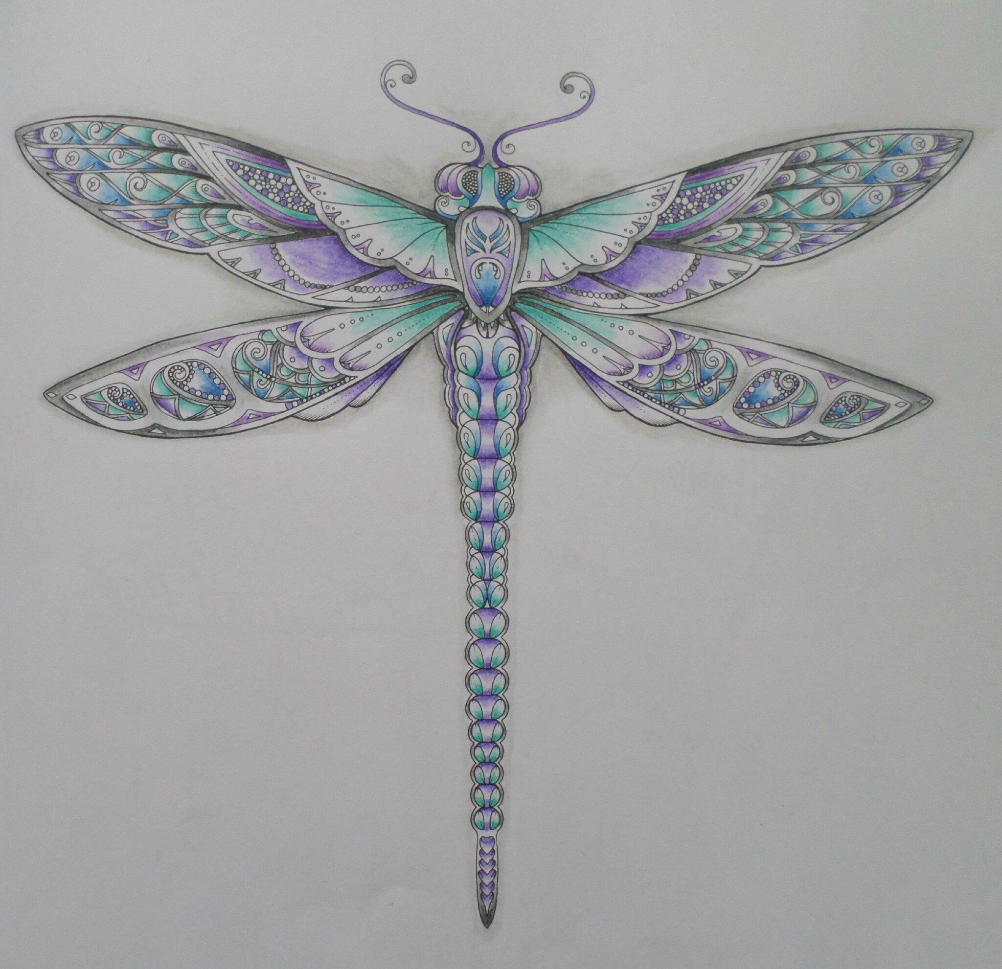 Libellule coloriage steffy elsass cr a - Libellule dessin ...