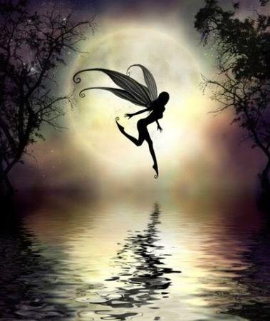 fairy171