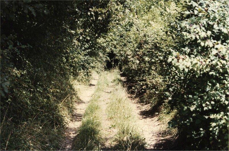 chemin d'accès à l'Herbétie