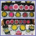 pique aiguilles fleurs senteur lavande