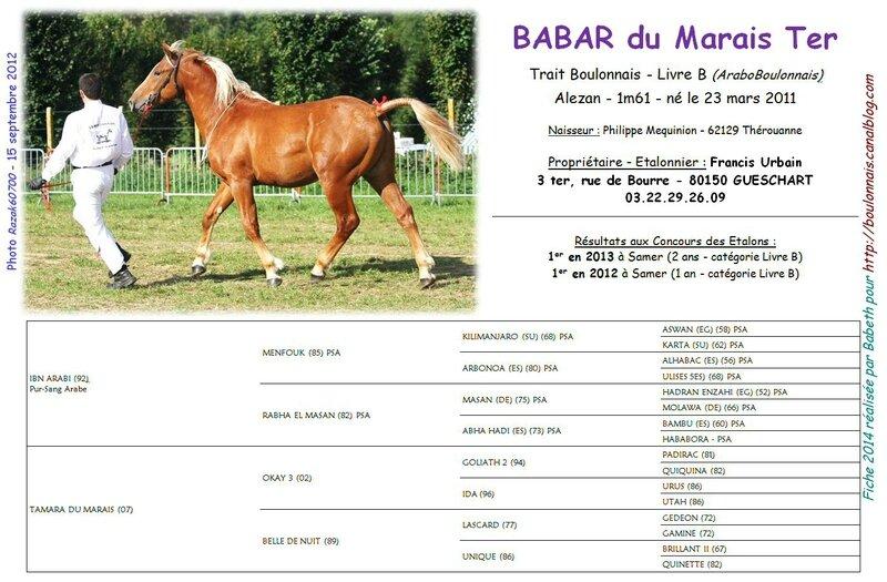 Fiche BABAR DU MARAIS DE TER (Livre B) 2014