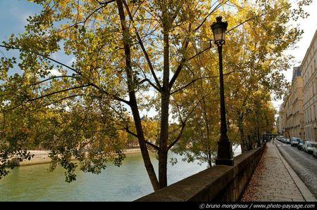 normal_automne-ile-st-louis