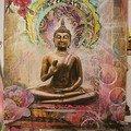 Ma vie en Zen