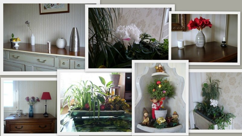 1-2015-12-23 déco Noël