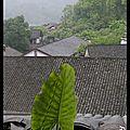 Sorties des cartons : xinping dans la province du guangxi