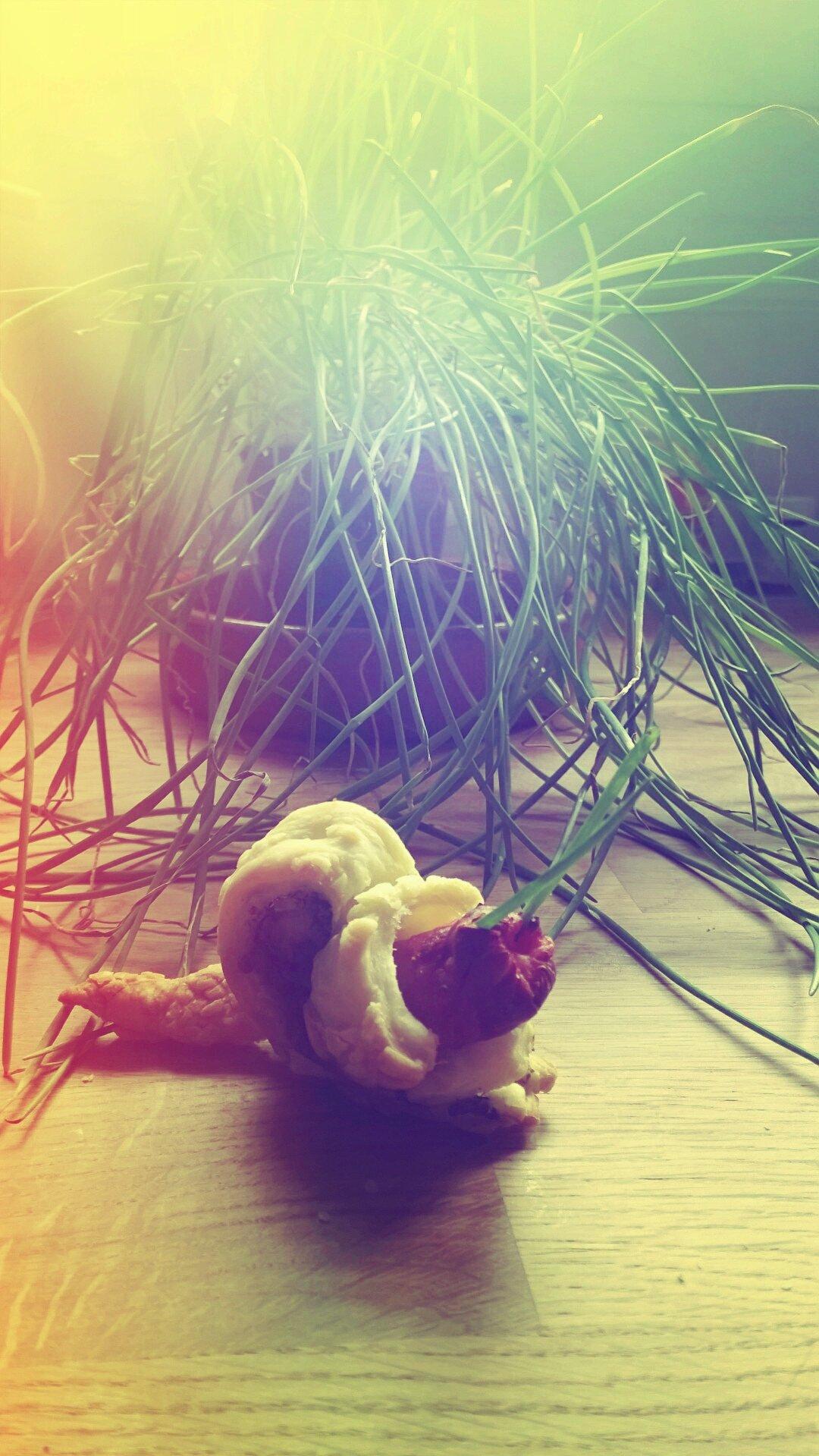 Un escargot tout chaud !