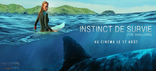 1449-instinct-de-survie-the-shallows