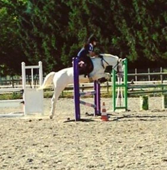 jacomo saut 2