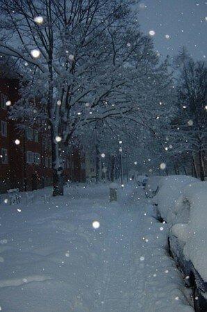 neige_hiver_vachement_munich_150_530443