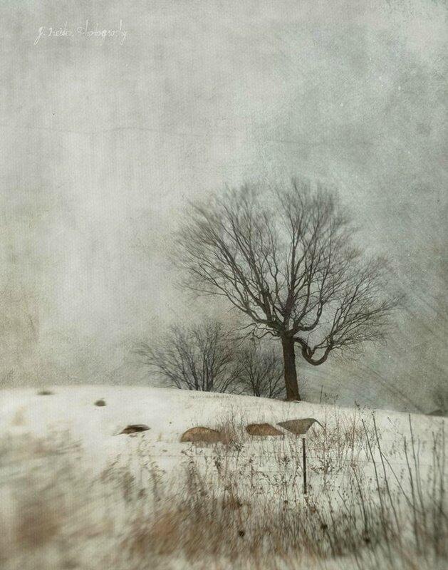heiden jamie hide and seek winter-walk-watercolor-landscape