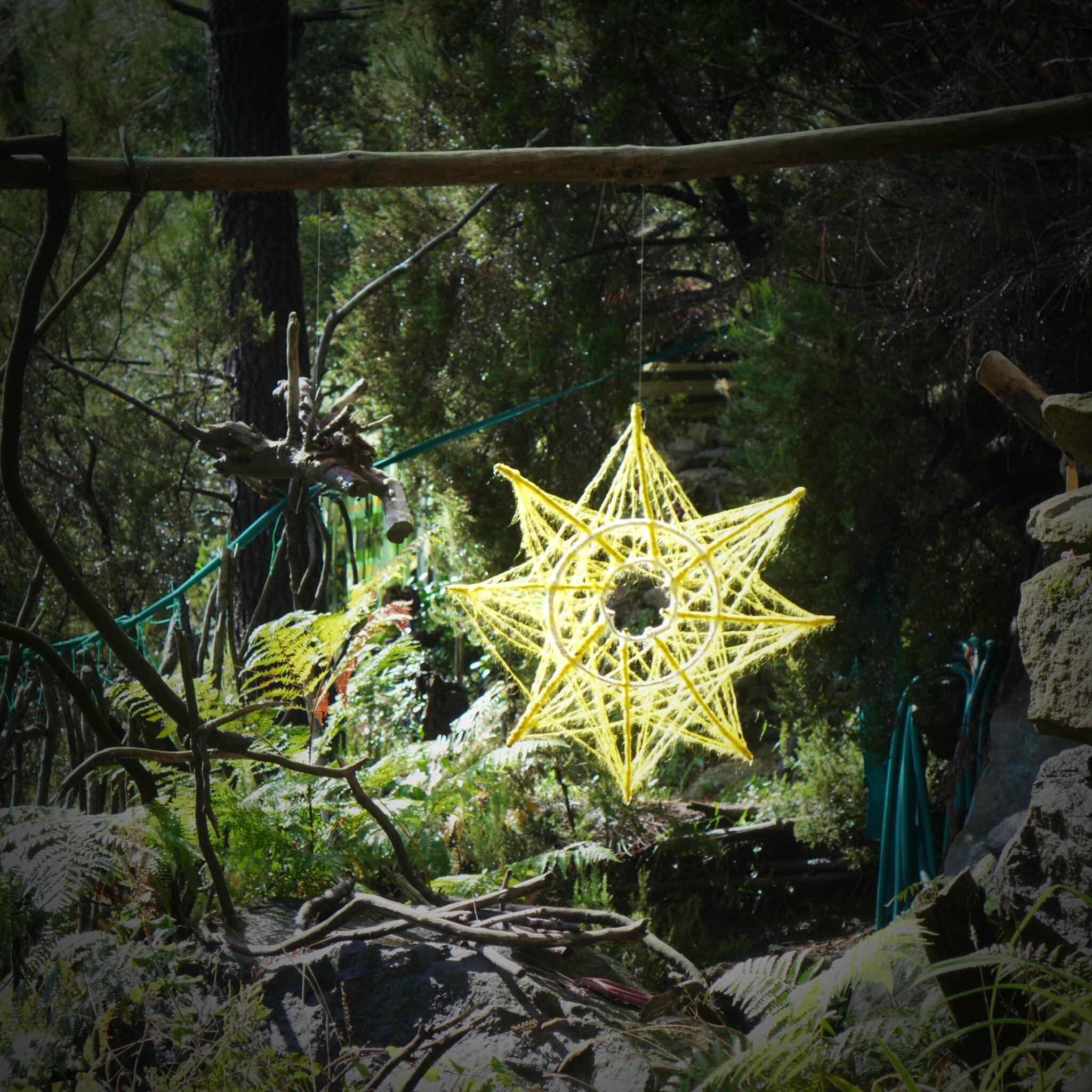 lueur dans la forêt yurtao