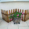 jardin 2012 7