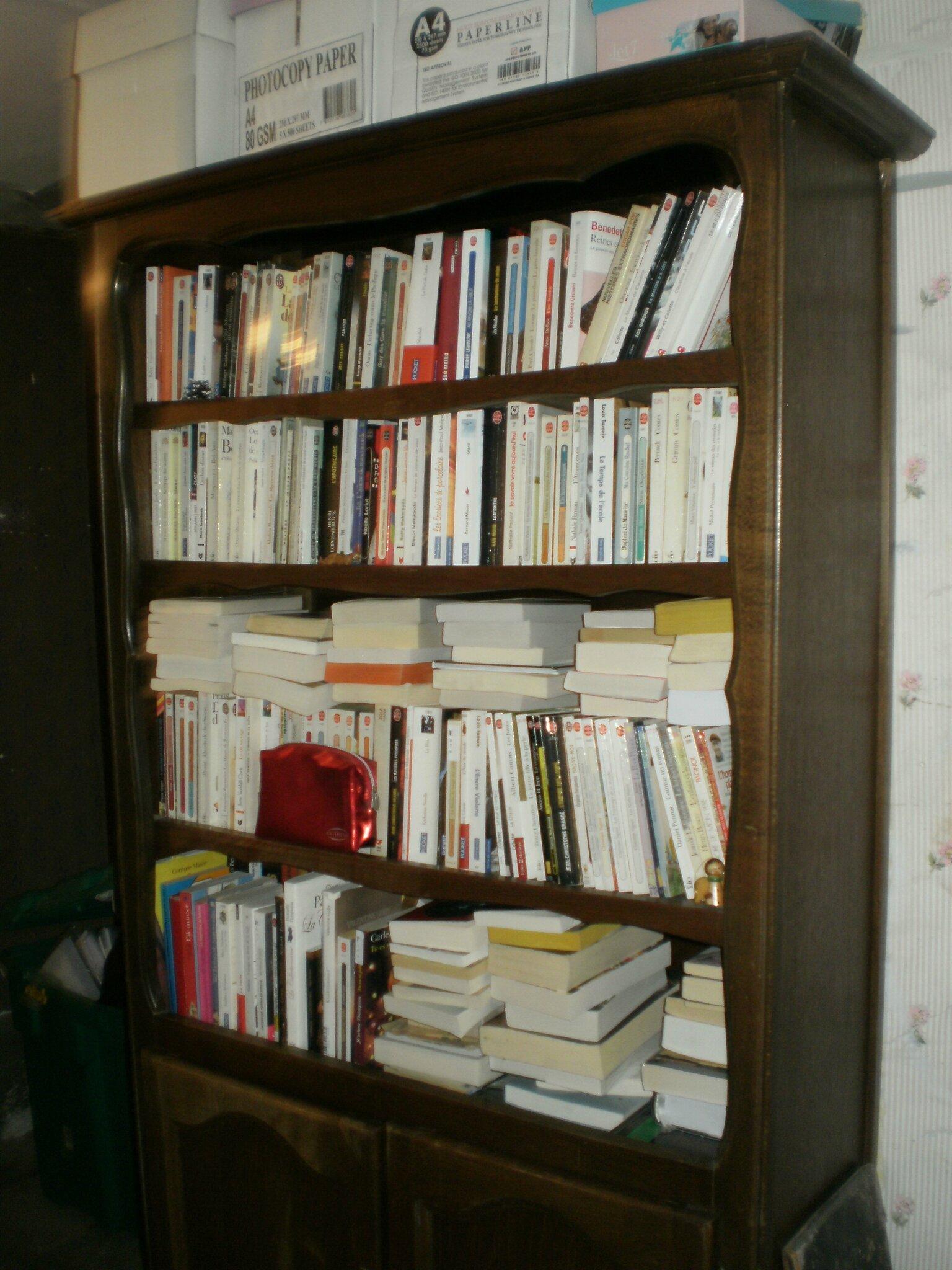 Le bilan de mes lectures 2015