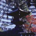 JAPON 1978 1979