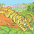 Les rayures du tigre -