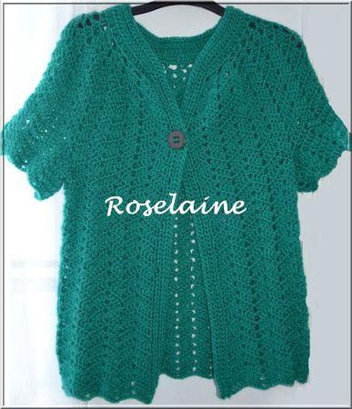 Roselaine144 gilet crochet