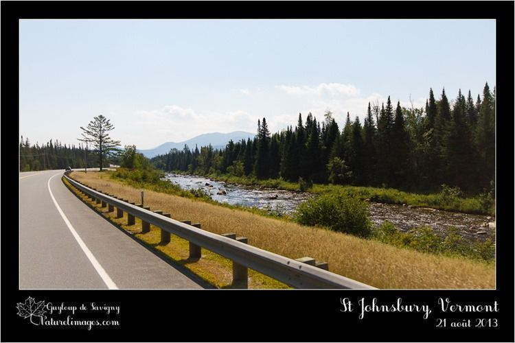 IMG_0104-naturelimages.com