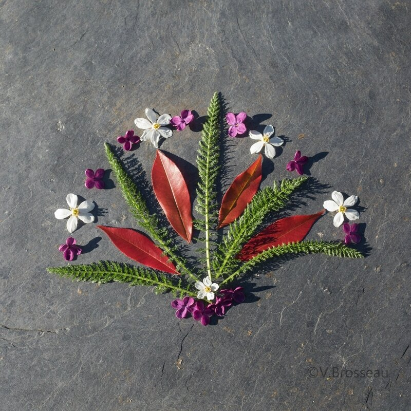 mandala-fleur-feuille17-04