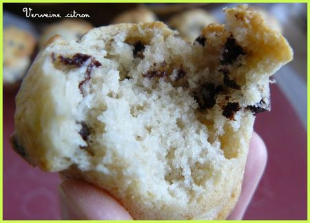 muffins_coco_2__1_