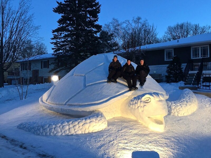 tortue-sculpture-immense-neige