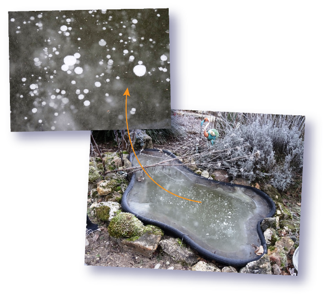 bassin gele et ses bulles