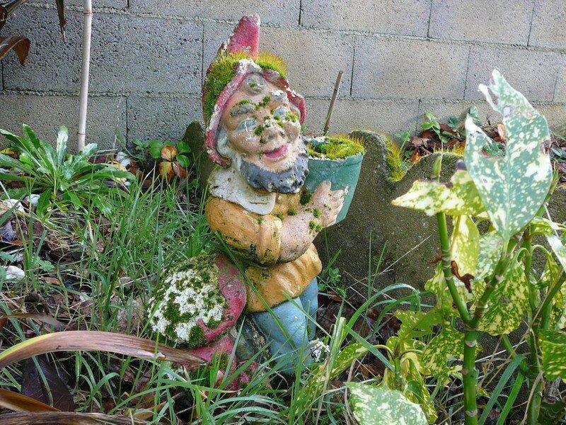 Le nain de jardin photo de mes photos la terre les - Nain de jardin voyageur ...