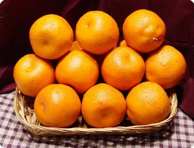 oranges1