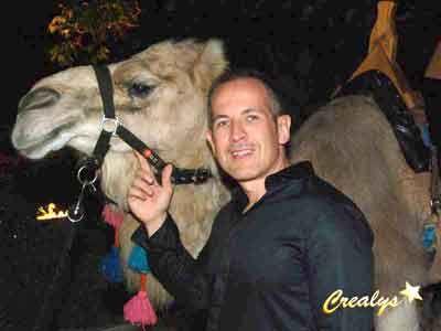 location dromadaires et chameaux particulierentreprise mairie foire - Location De Chameau Pour Mariage
