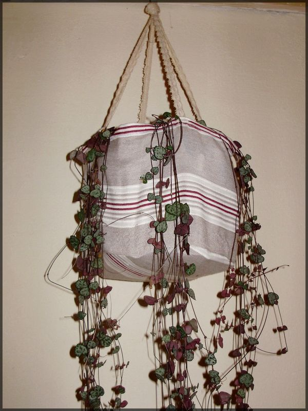 Suspension pour plante verte chiffons papillons - Suspension pour plante ...