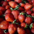 C'est la saison des fraises ....