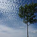 semaine 28 nuages