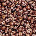 Planter café ...
