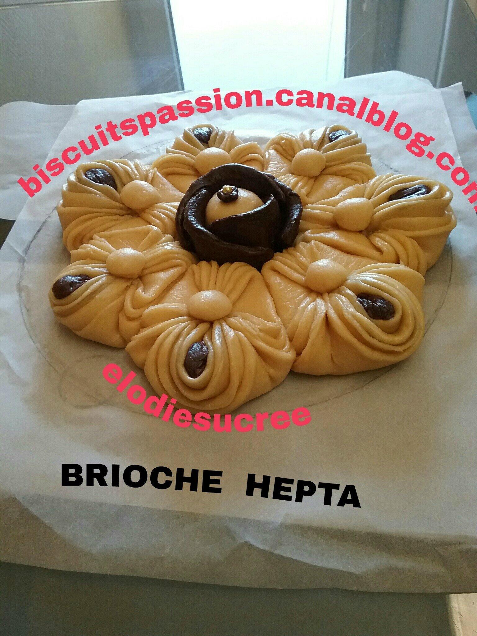 BRIOCHE HEPTA