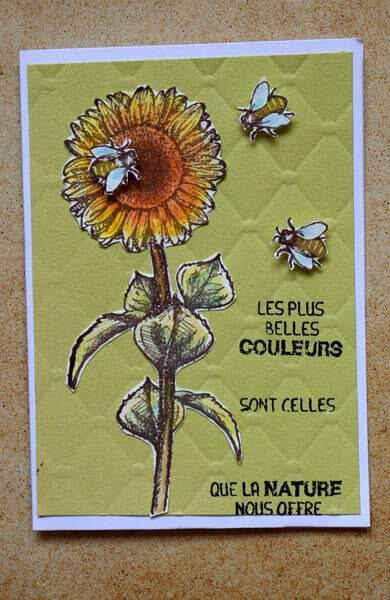 Tournesol aux abeilles