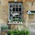 vitrine fleuriste emprunté sur le net