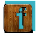 facebook-logo-bois3