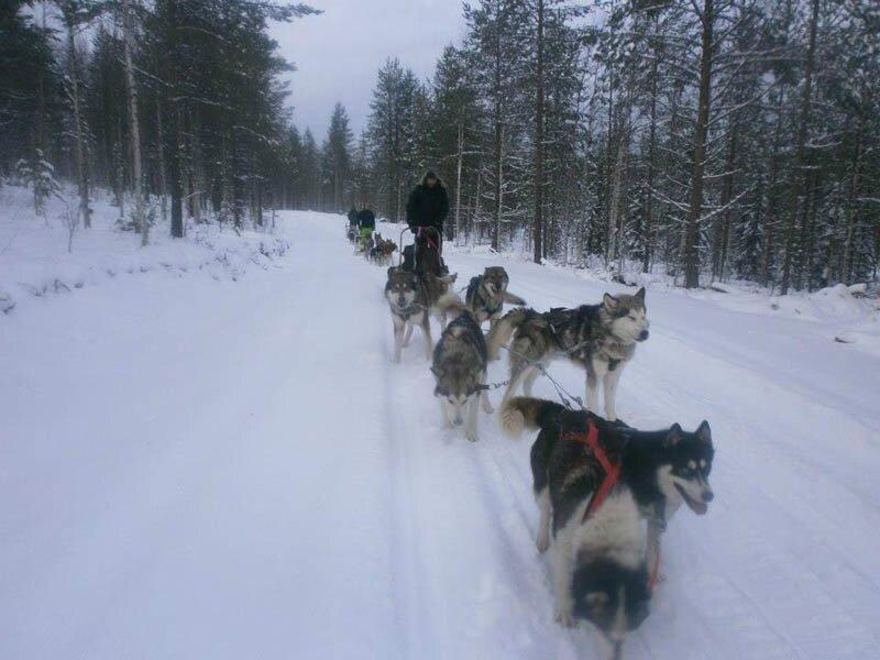 121215_014_Sylvain_Rovaniemi