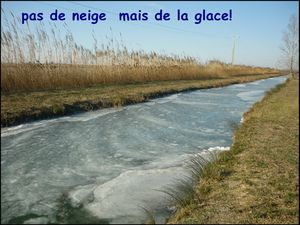 glaceouneige
