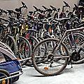 velogenie, location de vélos, remorque enfant