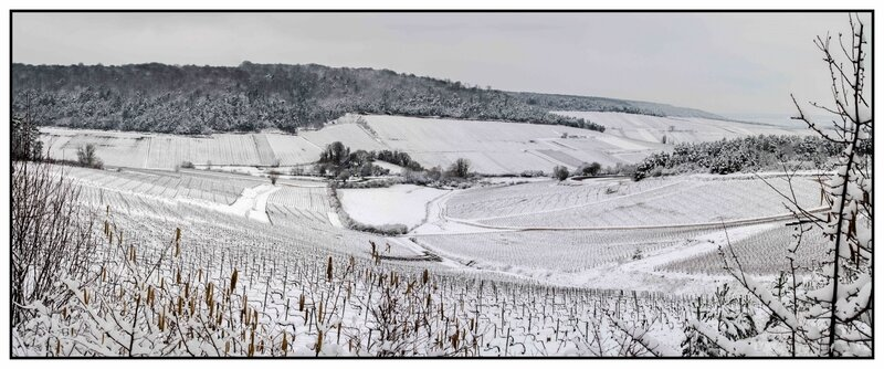 2018-03-19 Vignes Enneigées