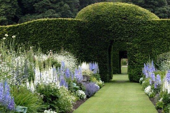 Un gazon anglais le cottage de gwladys for Jardin anglais mixed border