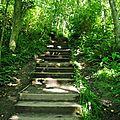 Trail falaise