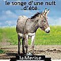 ✔ 2015 LE SONGE D'UNE NUIT D'ÉTÉ