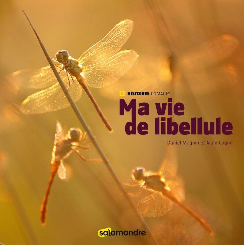 ma-vie-de-libellule_fr_844